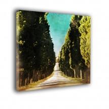 Obraz w stylu nowoczesnym Aleja drzew nr 2220