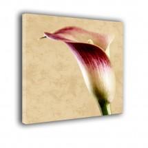 Kwiatek nr 2432