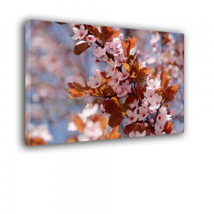 Kwiaty nr 2458