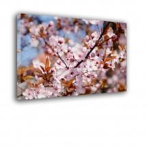 Wiosna nr 2461