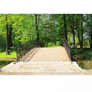 Fototapeta pomost w parku między drzewami