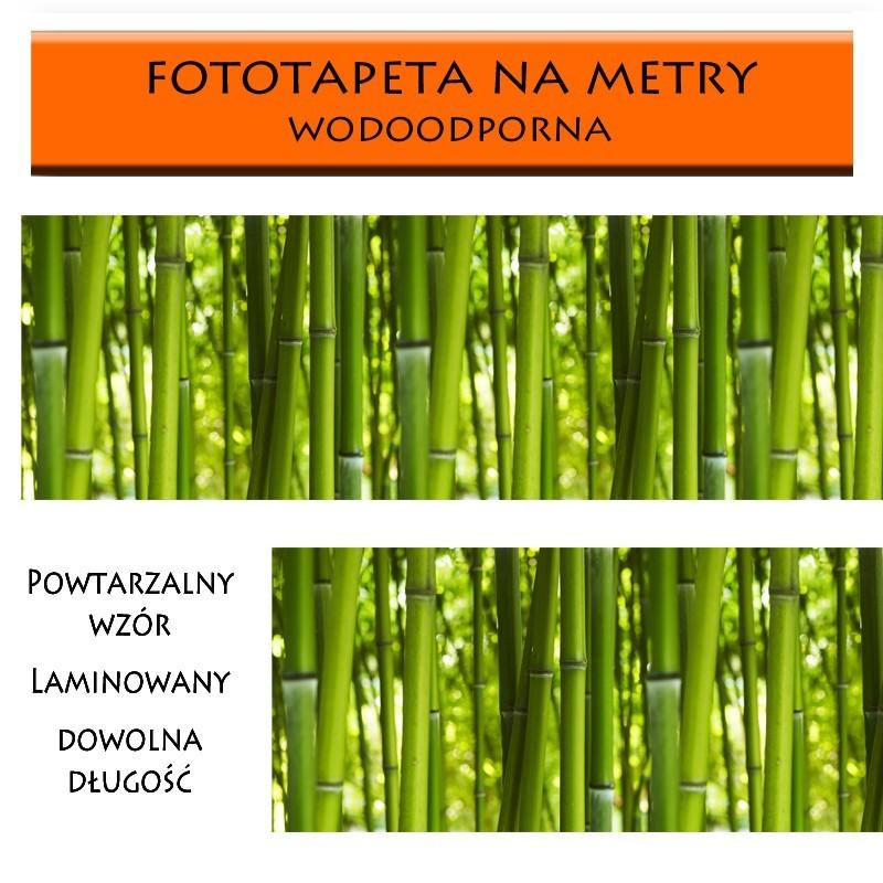 Fototapeta z bambusowym wzorem