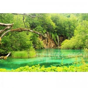 Fototapety jezioro - wodospad w zieleni