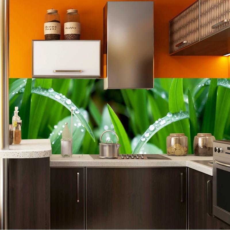 Fototapety Panoramiczne Trawa Do Kuchni