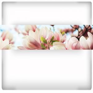 Fototapeta kwitnąca magnolia
