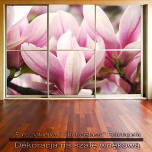 Magnolie - dekoracja na szafę