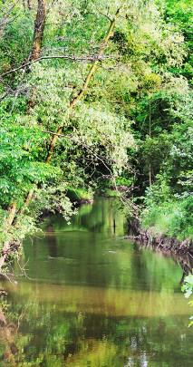 Fototapeta z rzeką