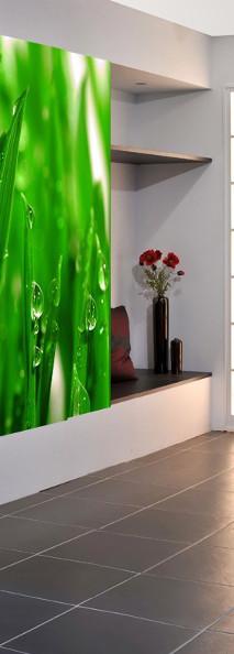 Zielona fototapeta w kuchni