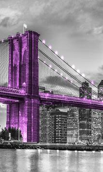 Most Brooklyński na fioletowo