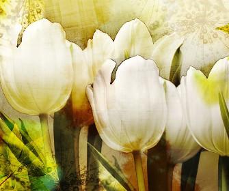 Rysunek z motywem Tulipanów